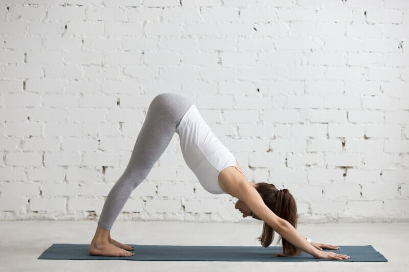 downward dog exercise or post in yoga training