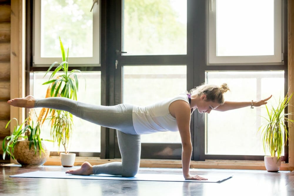 Yoga At Home: Bird Dog Pose